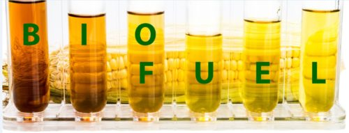 biofuel-2